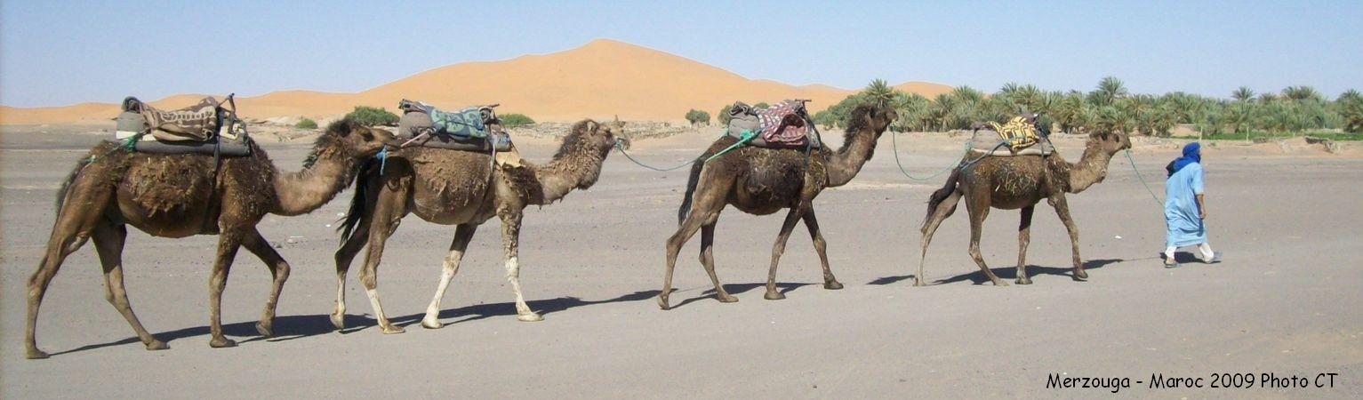 camping car maroc